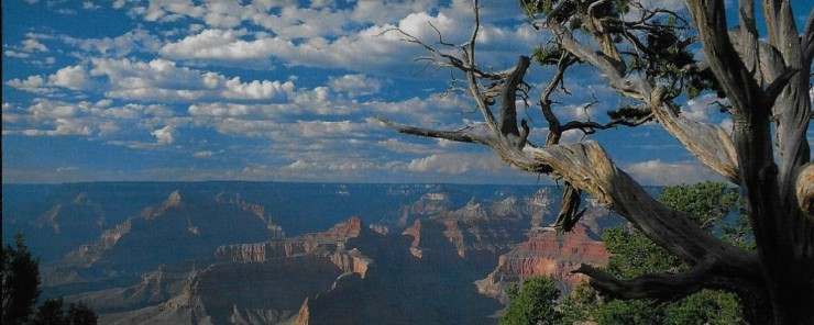 cropped-cropped-grand-canyon-1.jpg