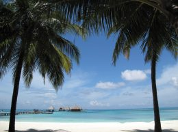 cropped-beach-blue-sky-clouds-802613.jpg