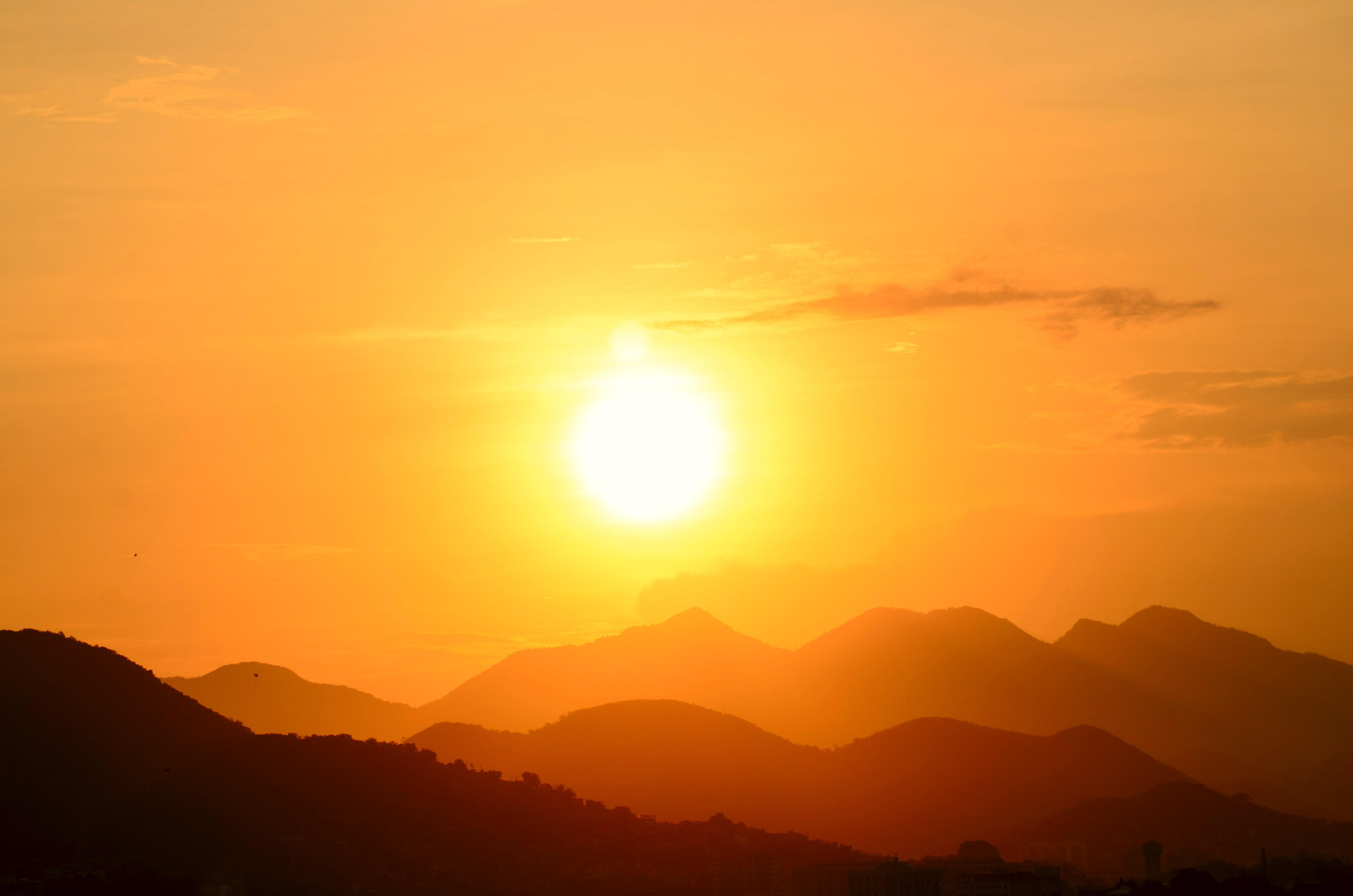 backlit-dawn-fog-585759