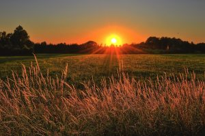 beautiful-cropland-dawn-1237119