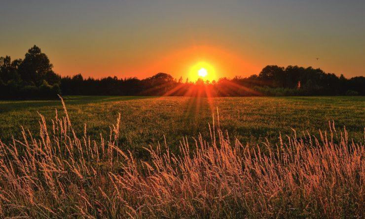 cropped-beautiful-cropland-dawn-1237119.jpg